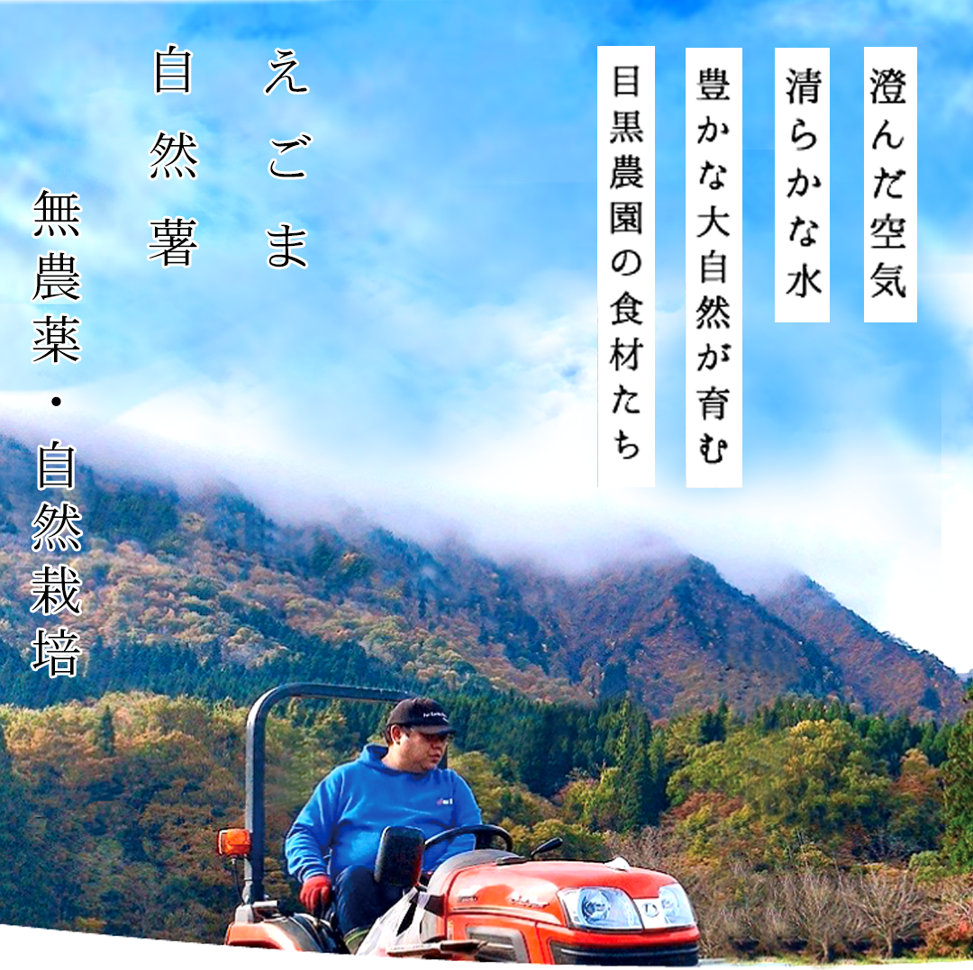 https://homepage.meguro-farm.jp/wp-content/uploads/2020/11/mbtop2_1.png