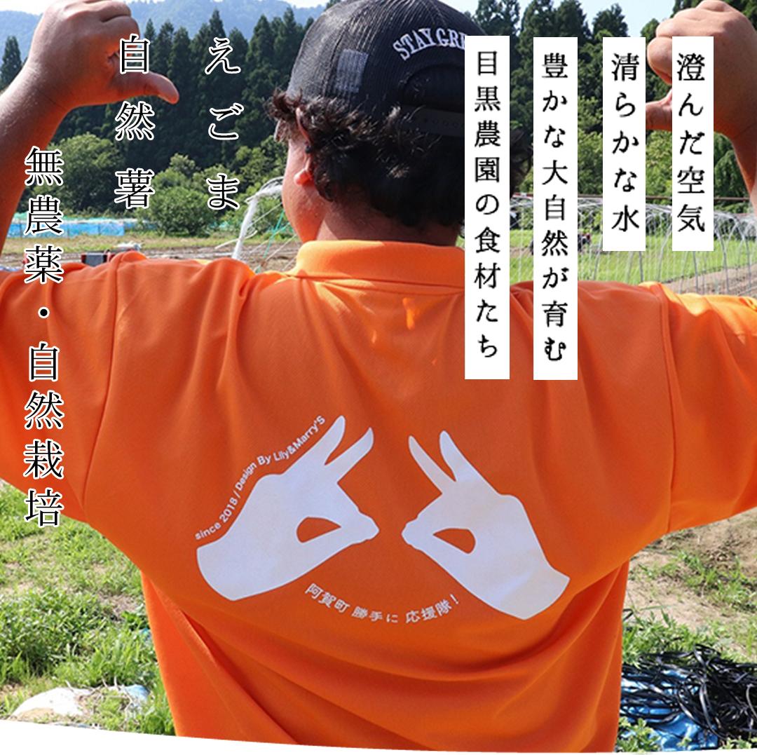 https://homepage.meguro-farm.jp/wp-content/uploads/2020/11/mbtop2_2.png