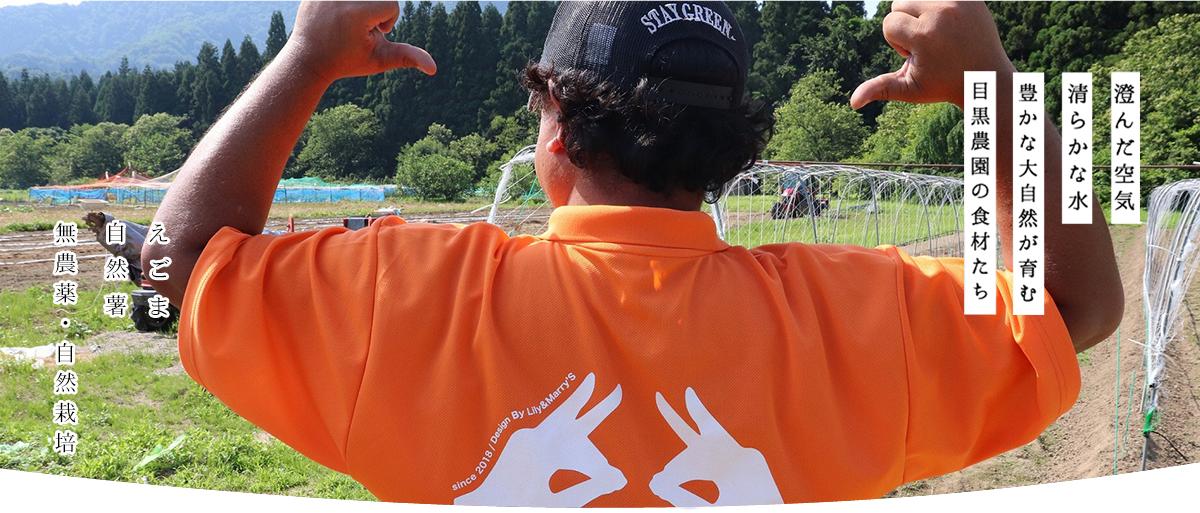 https://homepage.meguro-farm.jp/wp-content/uploads/2020/11/mtop3.png